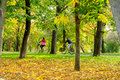 Young People Riding Bicycle Down The Park Alley In Autumn Stock Photos - 45974243