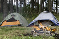 Tents In Forest Royalty Free Stock Photos - 45978108