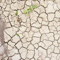 Dried And Cracked Mud Soil Fragment Royalty Free Stock Image - 45983986