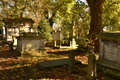Mausoleums Graves Covered Fallen Leaves Royalty Free Stock Images - 46025049