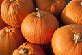 Pumpkins Stock Image - 46033171