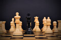 Chess King Surrounded Royalty Free Stock Images - 46042909