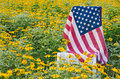 American Flag On Chair In Yellow Daisies Stock Photography - 46069392