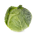 Savoy Cabbage Isolated On White Stock Photos - 46076533