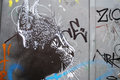 Street Art Cat Royalty Free Stock Images - 46134429