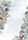 Christmas Background With Snowy Branches And Bullfinch Royalty Free Stock Photo - 46152275