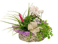 Floral Arrangement With Cyclamen Flowers And  Tillandsia Cyanea Flower In A Straw Basket, Isolated White Background. Royalty Free Stock Photos - 46163278