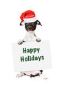 Santa Puppy With Happy Holidays Sign Stock Photography - 46180752