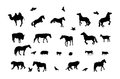 Silhouette Of Wild And Domestic Animals, Bird. Stock Images - 46191184
