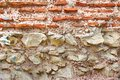 Old Rough Red And White Stone Wall Royalty Free Stock Photos - 46196588