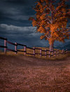 Stormy Afternoon Royalty Free Stock Images - 46219439