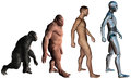 Funny Man Evolution Illustration Isolated Stock Image - 46220771