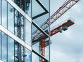 Red Crane Stock Images - 46248334