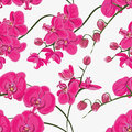 Pink Orchid Seamless Vector Pattern Stock Images - 46282464