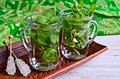 Tea With Mint Royalty Free Stock Images - 46312789