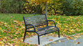 Empty Bench In The Park Royalty Free Stock Photography - 46320007