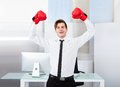 Successful Businessman Wearing Boxing Gloves Royalty Free Stock Image - 46363346