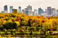 Montreal Downtown In The Autumn Royalty Free Stock Photo - 46402585
