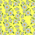Flower Seamless Pattern With Camomiles On Yellow. Royalty Free Stock Images - 46405359