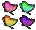 Butterflies Royalty Free Stock Images - 46451869