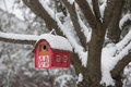 Bird House On Tree In Winter Royalty Free Stock Photos - 46453078