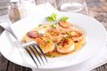 Seared Scallop Royalty Free Stock Images - 46481169