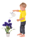 Little Boy Pouring On Flower Royalty Free Stock Photos - 46612228