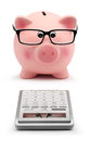 Piggy Bank With Glasses And Calculator Accounting Concept Stock Images - 46631894