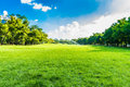 Green Trees In Beautiful Park Over Blue Sky Royalty Free Stock Photography - 46664217