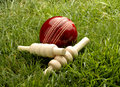 Cricket Ball Stock Images - 46668864