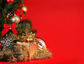 Christmas. Gift Box Under Christmas Tree Over Red Background Stock Photos - 46708543