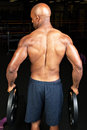 Muscular Back Royalty Free Stock Photo - 46740445