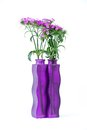 Violet Carnation In A Square Purple Bottle Royalty Free Stock Image - 46769926