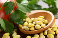 Raw Canary Beans Stock Images - 46780714