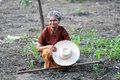 Asian Old Farmers In The Vegetable Garden. Stock Photography - 46783512