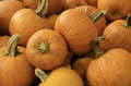 Pumpkin Patch Royalty Free Stock Photography - 46789057