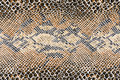 Texture Of Fabric Striped Snake Leather Stock Photos - 46800443