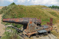 Russian Cannon Royalty Free Stock Image - 46821596