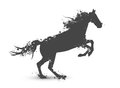 Abstract Horse Royalty Free Stock Images - 46840069