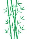 Green Bamboo Stems Stock Images - 46907674