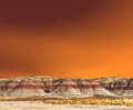 Petrified Forest Stock Photography - 46934402