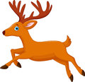 Cartoon Deer Running Stock Photography - 46949092