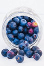 Jar Of Blueberries Royalty Free Stock Photography - 47047137