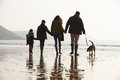 Rear View Of Family Walking Along Winter Beach With Dog Stock Photo - 47147760
