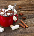 Cup Of Hot Chocolate Stock Photography - 47152962