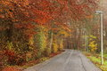 Road To Rusty Colorful Autumn Forest Stock Photo - 47161780