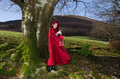 Red Riding Hood With Lantern. Stock Photo - 47190310