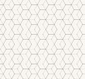 Hexagons Gray Vector Simple Seamless Pattern Royalty Free Stock Photo - 47205375