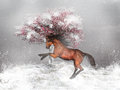 Horse In The Snow Stock Photography - 47271742