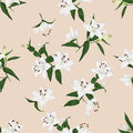 Lilies Almond Seamless Vector Background Stock Photo - 47285780